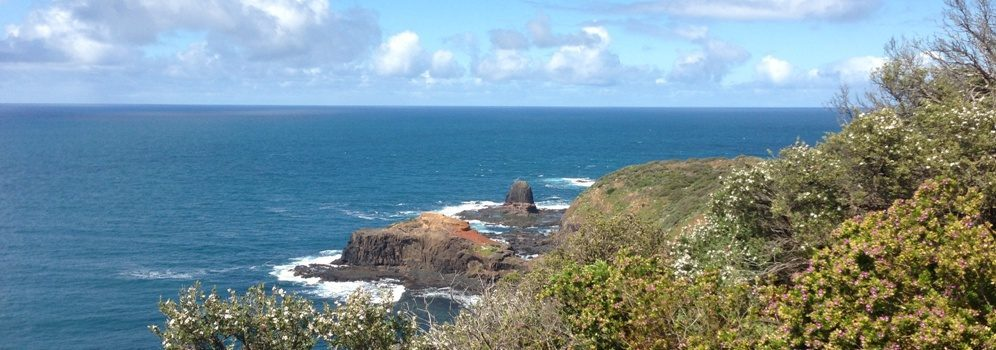 Cape Schanck Rocks